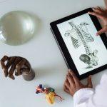 La formación en Fisioterapia y su importancia